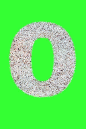 Fonts and Alphabet From Drygrass or Hay Isolate on Green. O.