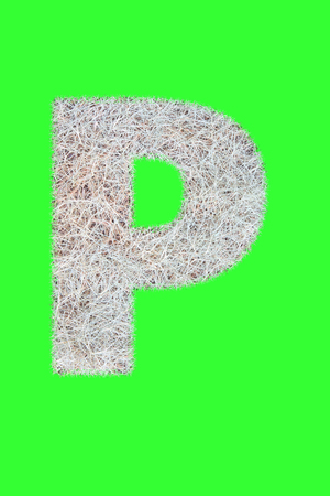 Fonts and Alphabet From Drygrass or Hay Isolate on Green. P.