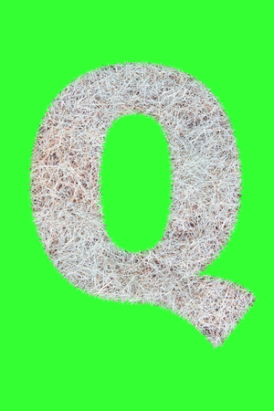 Fonts and Alphabet From Drygrass or Hay Isolate on Green. Q. Stock Photo
