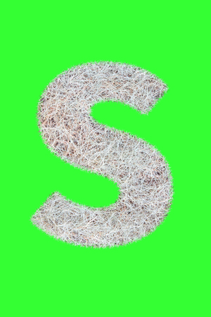 Fonts and Alphabet From Drygrass or Hay Isolate on Green. S. Stock Photo