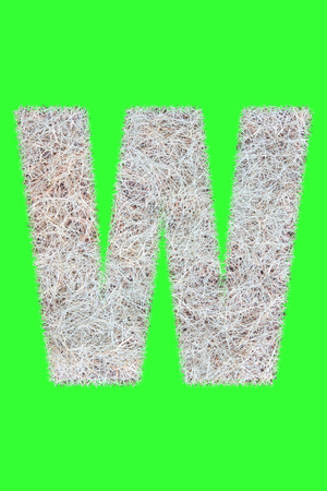 Fonts and Alphabet From Drygrass or Hay Isolate on Green. W. Stock Photo