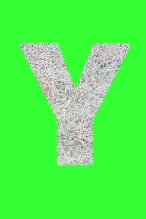 Fonts and Alphabet From Drygrass or Hay Isolate on Green.Y.