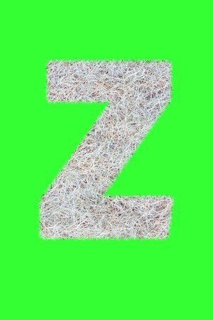 Fonts and Alphabet From Drygrass or Hay Isolate on Green. Z.