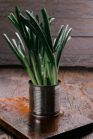 green onions: Green Onions in a can