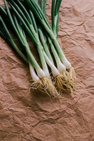 green onions: Green Onions on a paper background