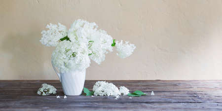 white hydrangea in jug on background wall Banque d'images