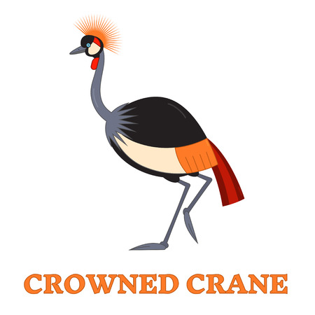 alone bird: Crowned crane line art vector illustration isolated on white. Birdwatching popular bird species collection. Flat style exotic crested african crane. Geometric animal pictogram.