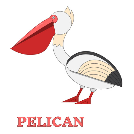 Pelican sea bird line art icon. Birdwatching popular bird collection. Flat design geometric funny pelican. Simple shape and linear bird style