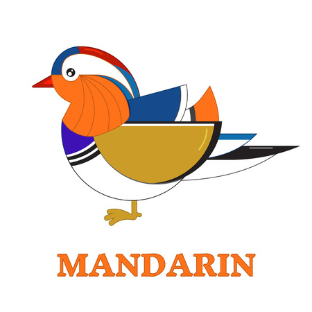 water bird: Mandarin duck water bird line art icon. Birdwatching popular bird collection. Flat design geometric colorful mandarine duck colored in bright vivid colors. Simple and cute style.