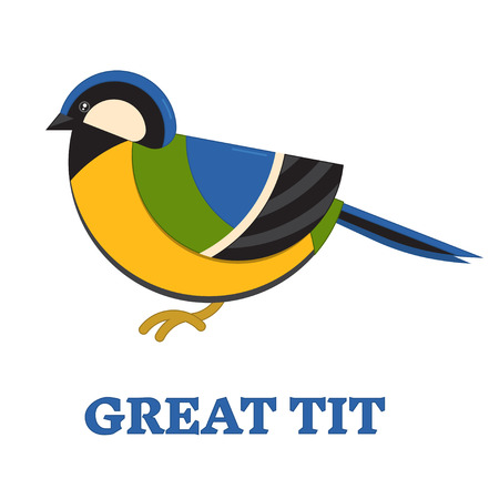 parus: Great blue tit bird line art icon. Birdwatching popular bird collection. Flat design geometric funny songbird titmouse. Simple shape and linear warbler bird style. Tomtit icon