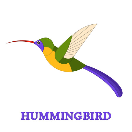 Hummingbird 라인 아트 아이콘입니다. 조류 관찰 조류 수집. 플랫 스타일 디자인 이국적인 colibri. 기하학적 인 간단한 모양 선형 허밍 조류 그림