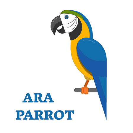 ara: Ara parrot exotic bird line art icon. Birdwatching popular bird collection. Flat design geometric tropical parrot colored in bright vivid colors. Simple and cute style.