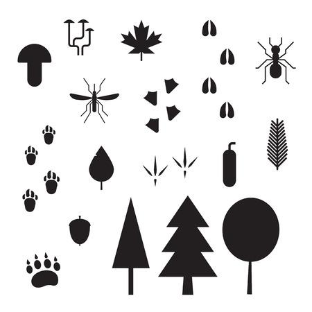 animal tracks: elementos de la vida del bosque. pistas de animales y aves, plantas, insectos, hongos y árboles describen los iconos del vector. criaturas del bosque, plantas y huellas silhoettes aislados sobre fondo blanco