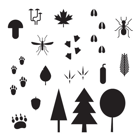 tracks: Forest life elements. Animal and bird tracks, plants, insects, mushrooms and trees outline vector icons. Forest creatures, plants and footprints silhoettes isolated on white background Illustration
