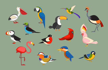 birding: Flat design vector birds icon set. Cartoon bird collection. Popular birding species icons. Exotic bird line art set Illustration