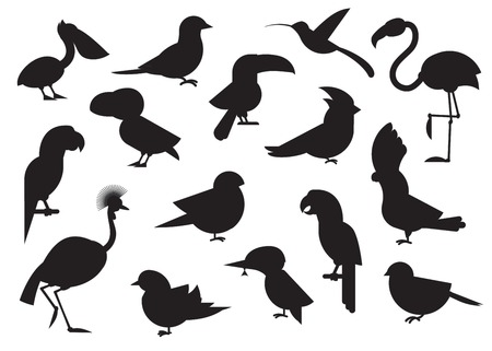 Outline design vector birds icon set. Various world bird silhouette collection. Popular birding species icons.