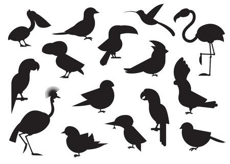 Projektowanie wektora ptaki zestaw ikon. Kolekcja ró? Nych ptaków sylwetka? Wiata. Popularne ikony gatunków birding. Ilustracje wektorowe