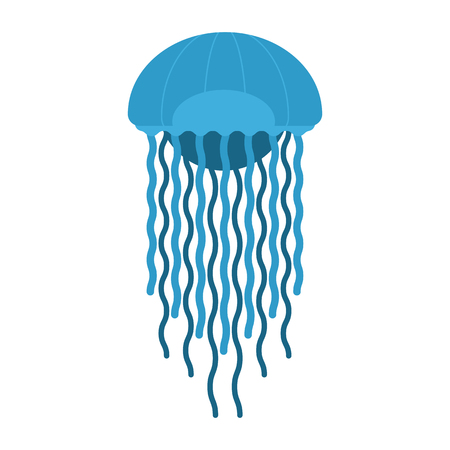 medusa: Tropic jellyfish illustration. Vector medusa animal. Underwater creature icon. Sea jellyfish isolated on white background. Stock Photo