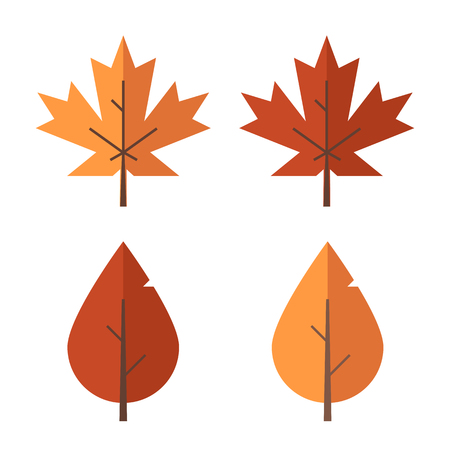 birch leaf: Autumn leaf set. Red and orange fallen autumn leaves. Maple and birch leaf isolated on white background.