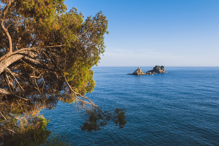 Montenegrin landscape with Sveta Nedjelja island and tilted pine tree view on the coast path to from Perazica Do to Petrovac. Adriatic seascape, Montenegro. Stock Photo