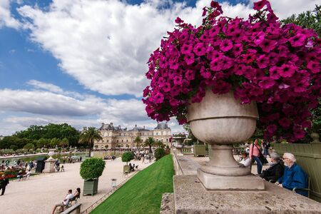 Paris, France - August 13, 2017. View of Luxembourg gardens and Luxembourg Palace, now is home to French Senate. Popular parisian landmark and famous public park with historic building and flower pot. Archivio Fotografico - 127947950
