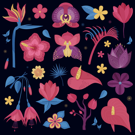Tropical rainforest flowers. Cartoon exotic night flower set. Botanical illustration with exotic plants, wildflowers, brazil tropic orchid. Botany design elements.
