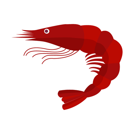 Cartoon shrimp vector illustration in flat design. Red prawn icon isolated on white background.