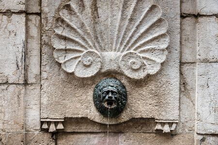 Lion Head Stone Fountain Close up View