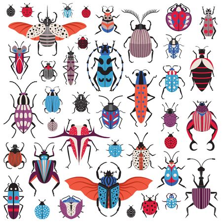Bug species and exotic beetles icons collection. Various insects set with as Goliath beetle, Frog-legged, Ladybug, Hercules, Tortoise, Colorado potato, Giraffe weevil and other strange bugs in flat.