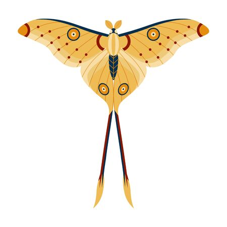Colorful Tropical Butterfly Moth Icon in Cartoon Stock Illustratie