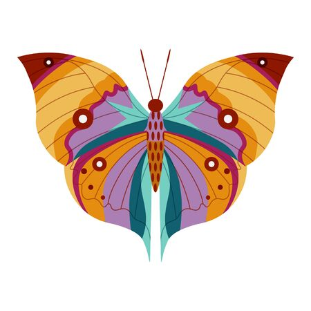 Colorful Tropical Butterfly Moth Icon in Cartoon 向量圖像