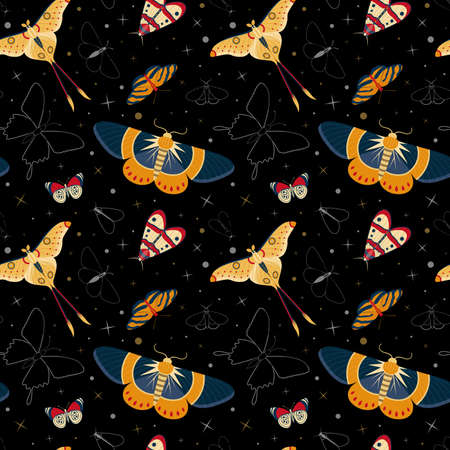 Tropical moth pattern with colorful exotic butterflies silhouettes on black. Exotic rainforest insects seamless background for prints, textile and fabric designs.