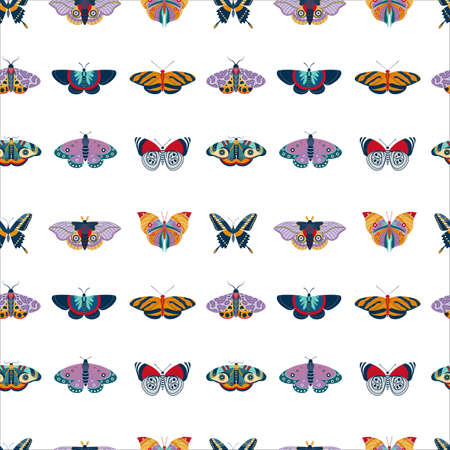 Exotic Moth and Tropic Butterfly Seamless Pattern 向量圖像