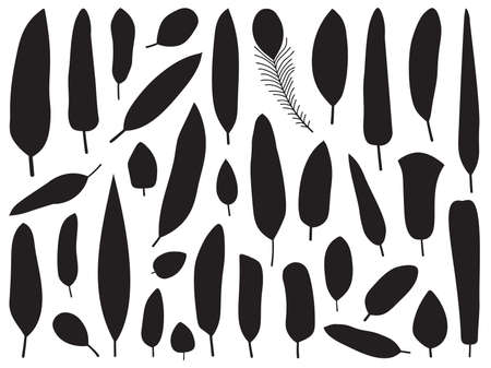 Black and White Bird Feather Silhouettes 向量圖像