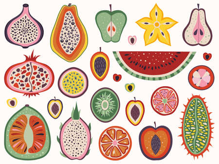 Exotic and Tropical and Cut Fruit Slices Illustration