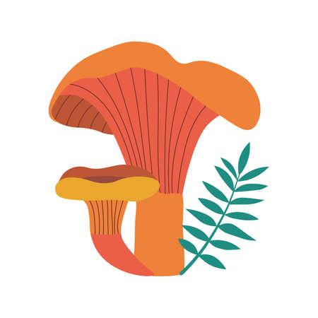 Forest Mushroom Chanterelle Fungi in Cartoon Style