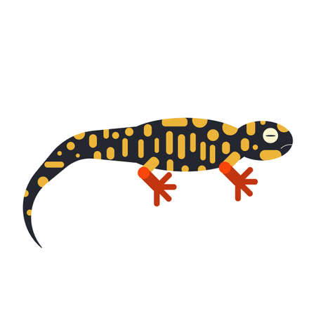 Geometric Stylized Salamander Icon in Flat Design