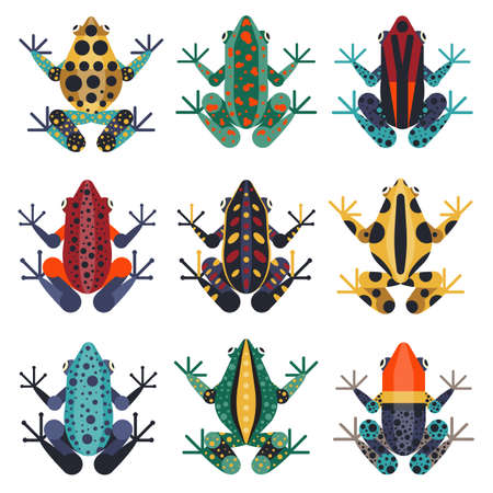 Tropical Poison Dart Frogs Set in Flat