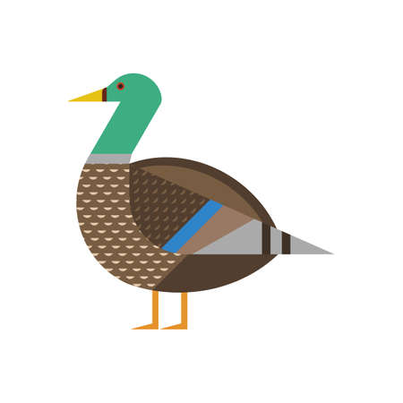 Mallard Bird Geometric Icon in Flat Design