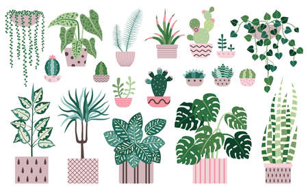 House Plants and Indoor Home Flowers Icons