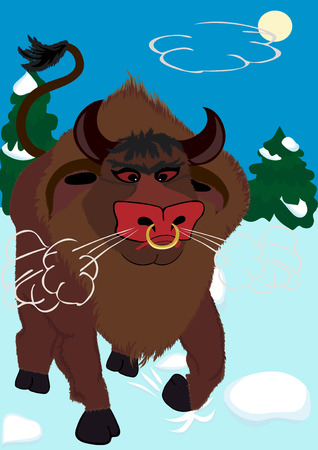 enraged: Muzzle of the shaggy furious bull. A symbol of New 2009  Illustration