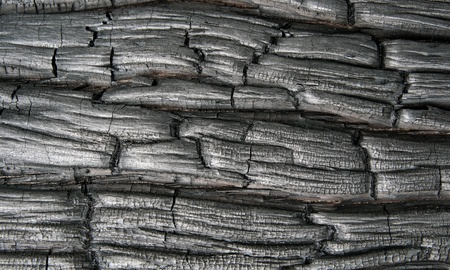 Charred black wood as a background