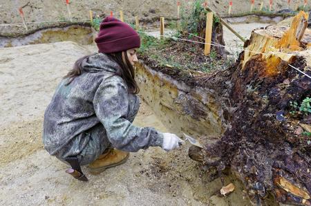 Stadium der archäologischen Arbeiten - die Ausrichtung der Baugrubenwand