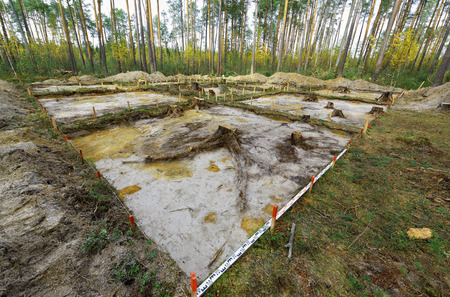 felled: The site of the archaeological excavation at the stage of the emergence of the continent