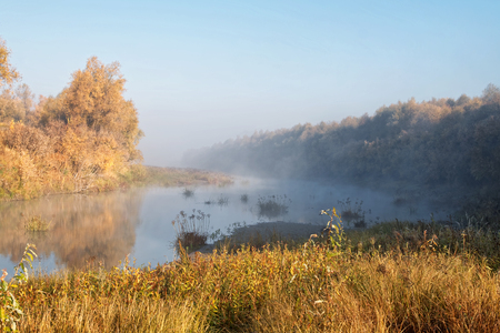 River bank. River reeds and bushes on a cold autumn morning in dense fog Stock Photo