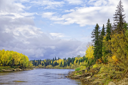 Autumn noon in the Siberian taiga, view from the river