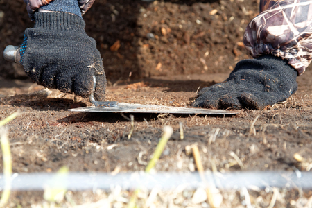 The hands of the archaeologist with a trowel in the pit