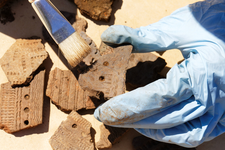 Primary processing of archaeological finds with a brush