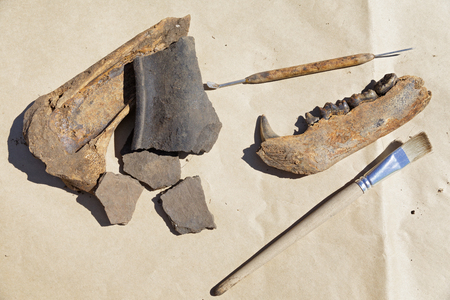 Still life with archeological tools and finds Foto de archivo