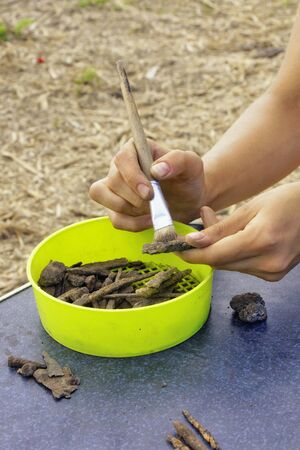 Archaeologist cleans and sorts finds made in a field expedition